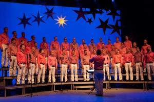 Julkonsert 2010 [Foto: Håkan Aspnäs]